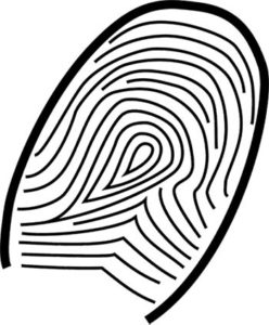 How to Get Your Lost Aadhaar with Biometric Authentication