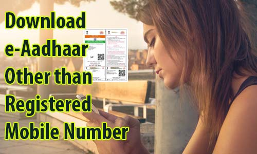 Download e-Aadhaar PDF Other than Registered Mobile Number